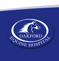 Oakford Equine Hospital - Horse Veterinary - Horse Surgery - Horse Lameness - Horse Reproduction - Horse Emergency