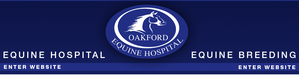 Oakford Equine Hospital - Equine Surgery - Equine Breeding - Frozen Semen - Equine Care