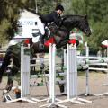 Sandro Hit Progeny Stand Out at Rio Olympics